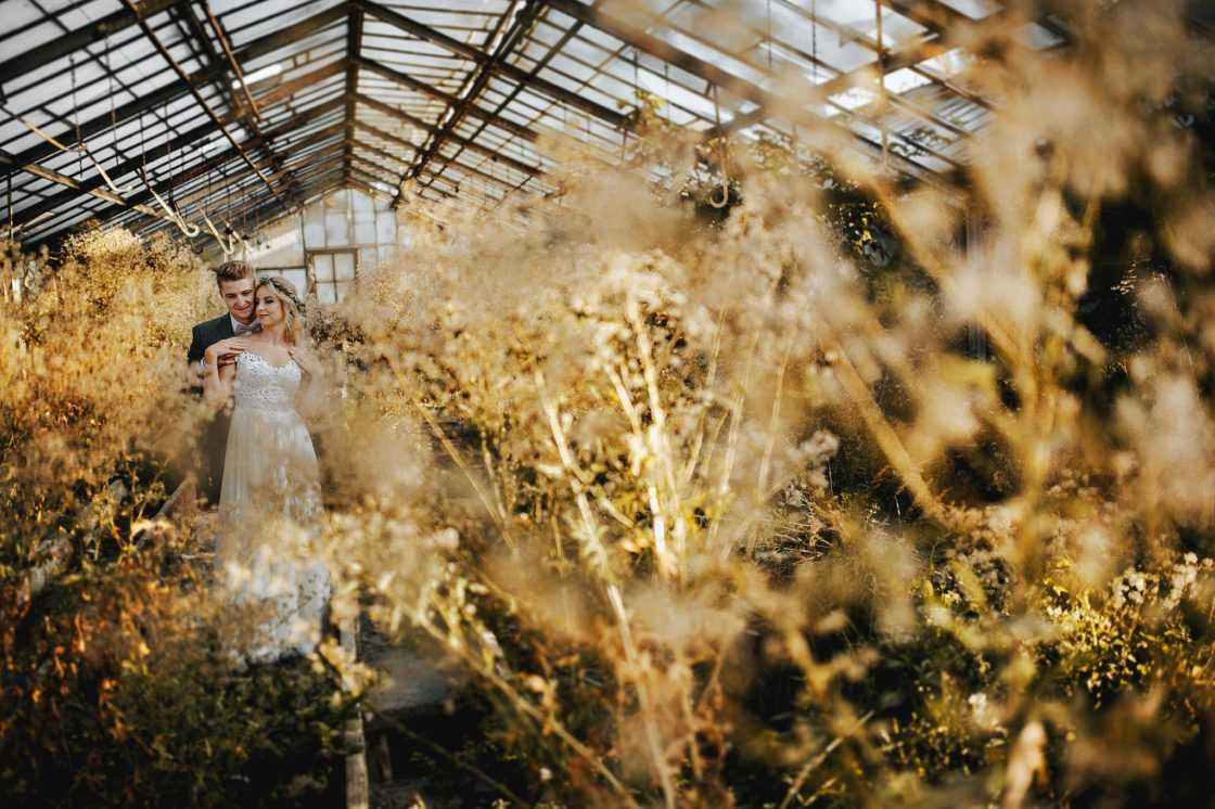 Sesja ślubna w szklarni 2019 04 13 0015