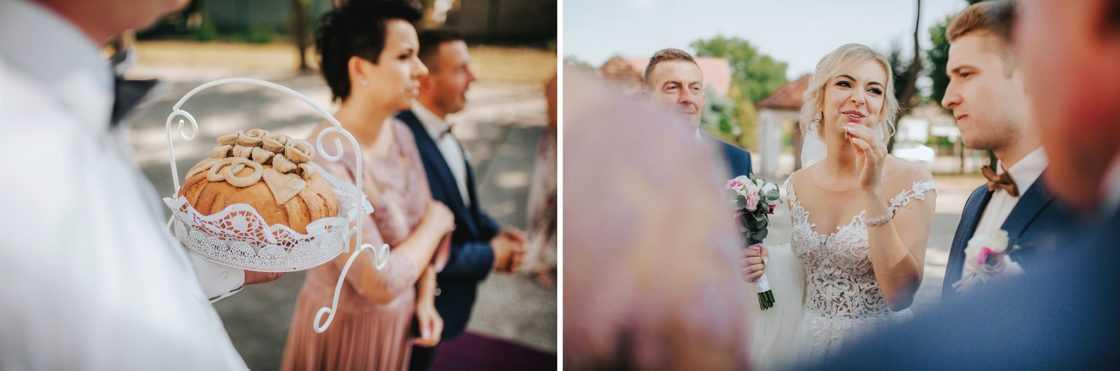 Sesja ślubna w szklarni 2019 04 13 0050