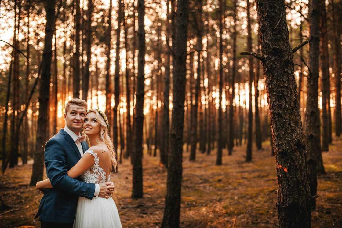 Sesja ślubna w szklarni 2019 04 13 0061